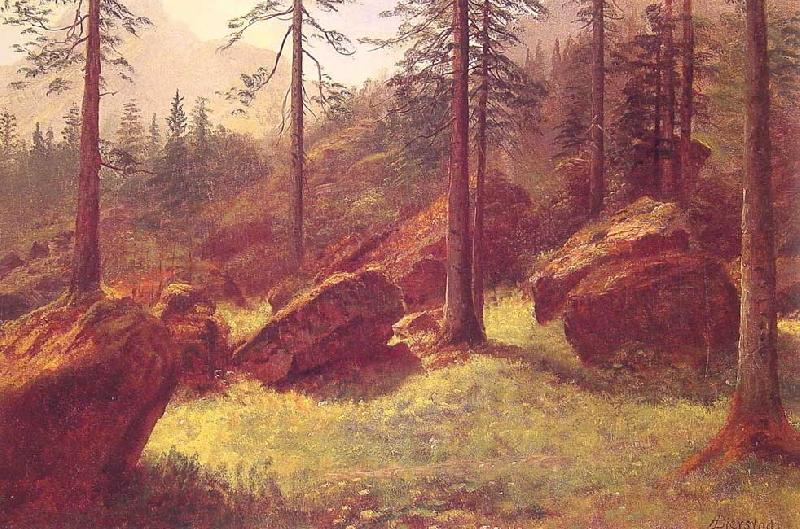 Albert Bierstadt Wooded Landscape